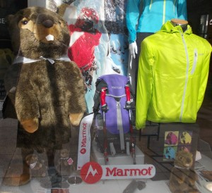 Marmots, a little memory for the chalet girl.